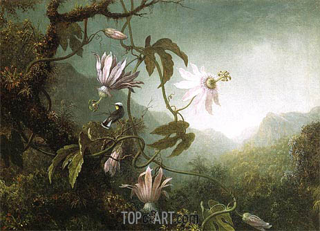 Hummingbird Pearched near Passion Flowers, c.1870 | Martin Johnson Heade | Painting Reproduction