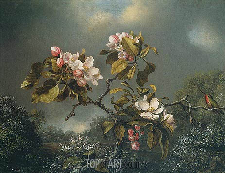 Apple Blossoms and Hummingbird, 1871 | Martin Johnson Heade | Painting Reproduction