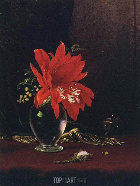 Red Flower in a Vase, c.1871/80 | Martin Johnson Heade | Painting Reproduction