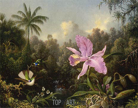 Orchid and Two Hummingbirds, 1872 | Martin Johnson Heade | Painting Reproduction