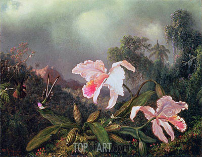 Jungle Orchids and Hummingbirds, 1872 | Martin Johnson Heade | Painting Reproduction