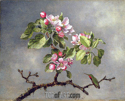 Apple Blossoms and a Hummingbird, 1875 | Martin Johnson Heade | Painting Reproduction