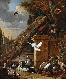 Peacocks and Ducks | Melchior d'Hondecoeter | Painting Reproduction