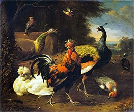 A Cockerel with other Birds | Melchior d'Hondecoeter | Painting Reproduction