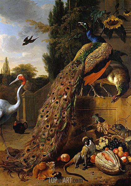 Peacocks, 1683 | Melchior d'Hondecoeter | Painting Reproduction