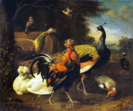 A Cockerel with other Birds, c.1668/95 | Melchior d'Hondecoeter | Painting Reproduction