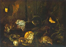 Still Life with Insects and Amphibians, 1662 von van Schrieck | Gemälde-Reproduktion