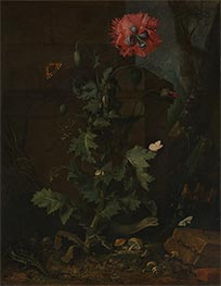 Still Life with Poppy, Insects and Reptiles, c.1670 by van Schrieck | Painting Reproduction
