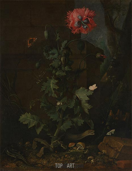 Still Life with Poppy, Insects and Reptiles, c.1670 | van Schrieck | Painting Reproduction