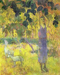Man Picking Fruit from a Tree, 1897 von Gauguin | Gemälde-Reproduktion
