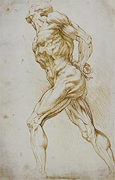 Anatomical Study (A Nude Striding to the Right), undated von Rubens | Gemälde-Reproduktion