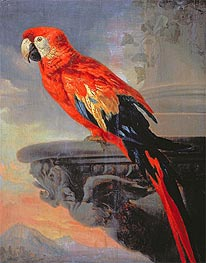 Parrot | Rubens | Painting Reproduction