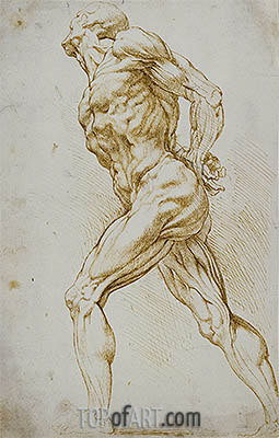 Anatomical Study (A Nude Striding to the Right), undated | Rubens | Painting Reproduction