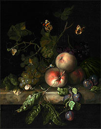 Peaches, Grapes and Plums with a Dragonfly | Rachel Ruysch | Painting Reproduction
