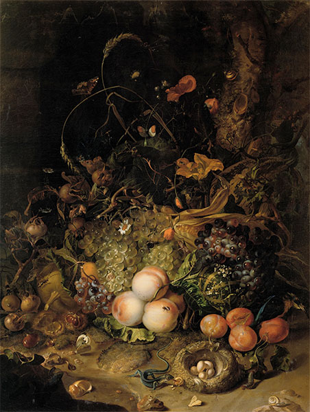 Fruit, Flowers, Reptiles and Insects on the Edge of the Forest, 1716 | Rachel Ruysch | Painting Reproduction