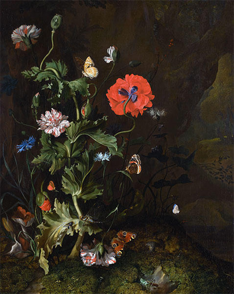 Still Life of Thistle between Carnations and Cornflowers, 1683 | Rachel Ruysch | Painting Reproduction