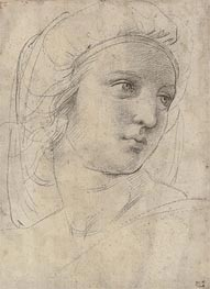 Head of a Muse, undated by Raphael | Painting Reproduction