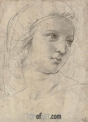 Head of a Muse, undated | Raphael | Gemälde Reproduktion