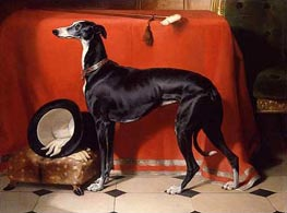 Eos, A Favorite Greyhound of Prince Albert, 1841 by Landseer | Painting Reproduction