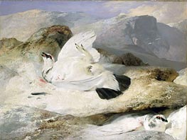 Ptarmigan in a Landscape, 1833 by Landseer | Painting Reproduction