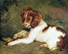 A Puppy teasing a Frog, 1824 by Landseer | Painting Reproduction