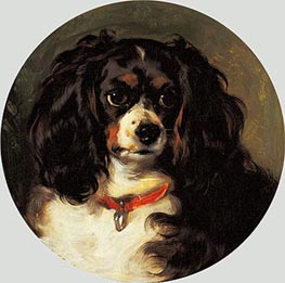 Dash, 1836 by Landseer | Painting Reproduction