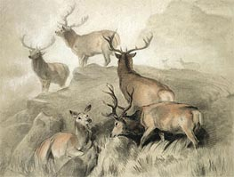 Some of the Best Harts in the Forest, 1860 by Landseer | Painting Reproduction