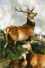 Deer of Chillingham Park, Northumberland, 1867 by Landseer | Painting Reproduction