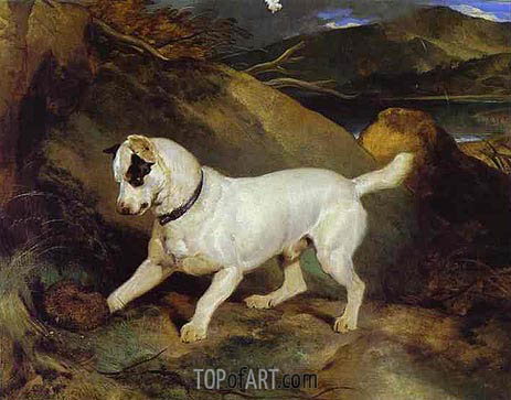 Jocko with a Hedgehog, 1828 | Landseer | Painting Reproduction