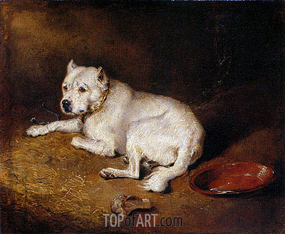 A Staffordshire Bull Terrier, c.1850/70   Landseer   Painting Reproduction