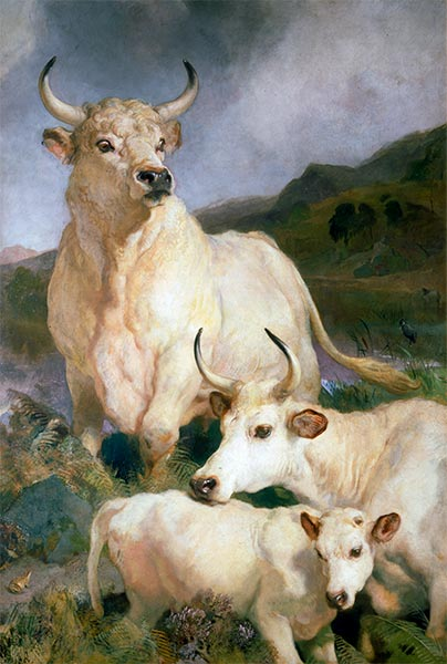 Wild Cattle of Chillingham, 1867 | Landseer | Painting Reproduction