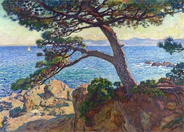 Le Pin de la Fossette | Rysselberghe | Painting Reproduction