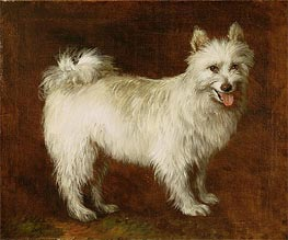 Spitz Dog, c.1760/70 by Gainsborough | Painting Reproduction
