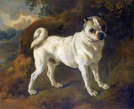 A Pug, c.1780/85 by Gainsborough | Painting Reproduction