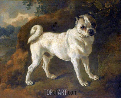 A Pug, c.1780/85 | Gainsborough | Painting Reproduction