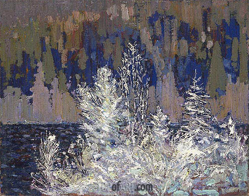 Frost-laden Cedars, Big Cauchon Lake, c.1915/16 | Tom Thomson | Painting Reproduction