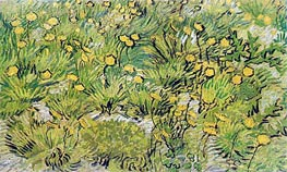 A Field of Yellow Flowers | Vincent van Gogh | Painting Reproduction
