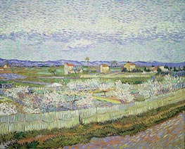 Peach Blossom in the Crau, 1889 von Vincent van Gogh | Gemälde-Reproduktion