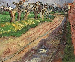 Pollard Willows, 1889 von Vincent van Gogh | Gemälde-Reproduktion