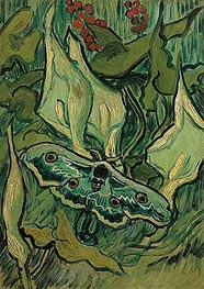 Emperor Moth | Vincent van Gogh | Painting Reproduction