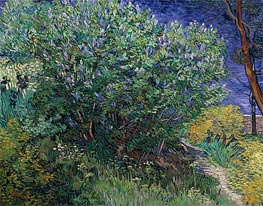 Lilac Bush (Lilacs), 1889 by Vincent van Gogh | Painting Reproduction