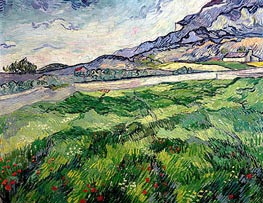 Green Wheat Field, 1889 von Vincent van Gogh | Gemälde-Reproduktion