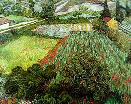 Field with Poppies, 1889 by Vincent van Gogh | Painting Reproduction