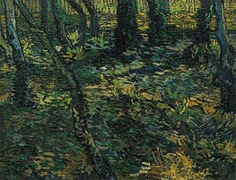 Undergrowth with Ivy | Vincent van Gogh | Gemälde Reproduktion