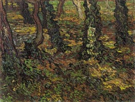 Tree Trunks with Ivy, 1889 by Vincent van Gogh | Painting Reproduction