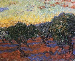 Olive Grove: Orange Sky, 1889 von Vincent van Gogh | Gemälde-Reproduktion