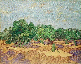 Olive Orchard, 1889 by Vincent van Gogh | Painting Reproduction