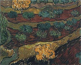 Olive Trees against a Slope of a Hill, 1889 von Vincent van Gogh | Gemälde-Reproduktion