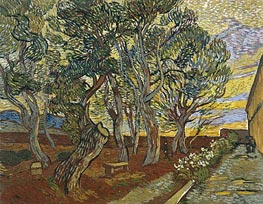 The Garden of Saint-Paul Hospital | Vincent van Gogh | Painting Reproduction