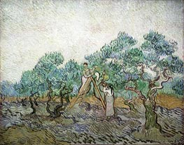 The Olive Orchard, 1889 von Vincent van Gogh | Gemälde-Reproduktion